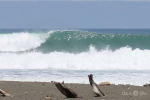 Surf Reports: Pavones, Costa Rica