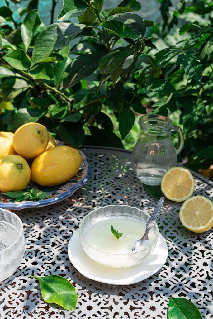 Gelo di limoni