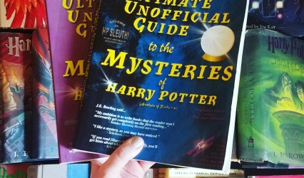Book Talk 5: Harry Potter and Baby's First Fandom