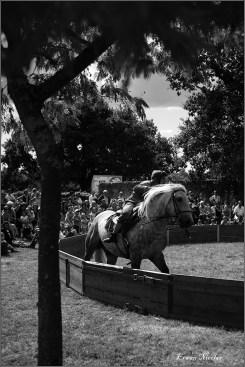 cirque equestre_06 (2)