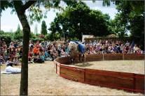 cirque equestre_14