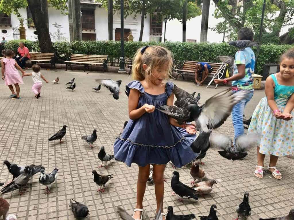 En uno de los muchos parques de Cartagena de Indias.