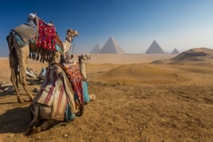 44_Egypt. Cairo - Giza. General view of pyramids from the Giza Plat shutterstock_250782967
