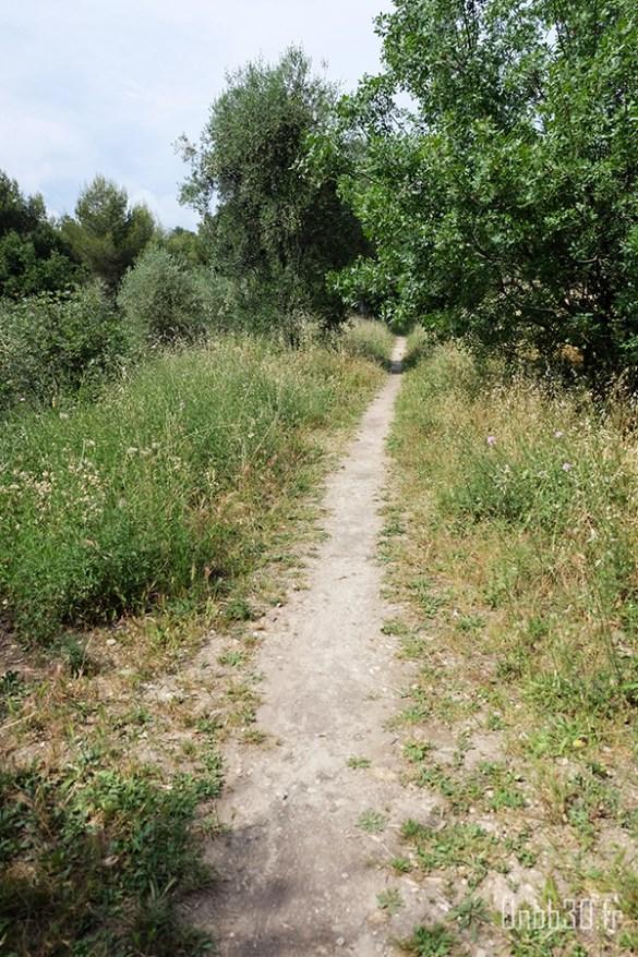 Parc Estienne D'orves chemin