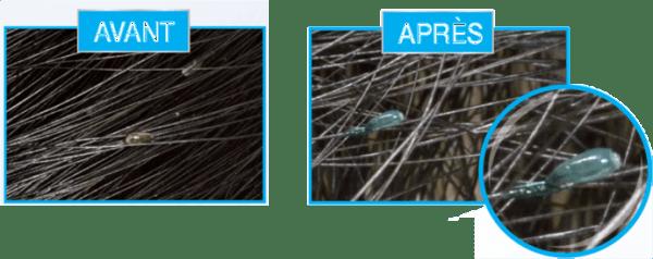 content_coloration-lentes