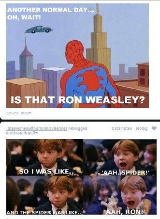 Spidey&Ron