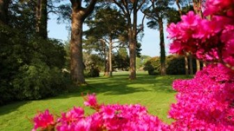 marketing-blog-muckross-gardens