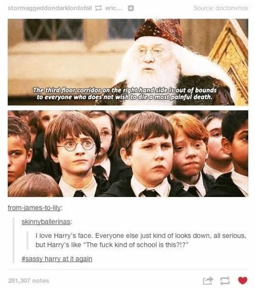 22 Of The Funniest Harry Potter Memes Ever Made