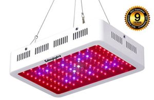 best led grow lights reviews