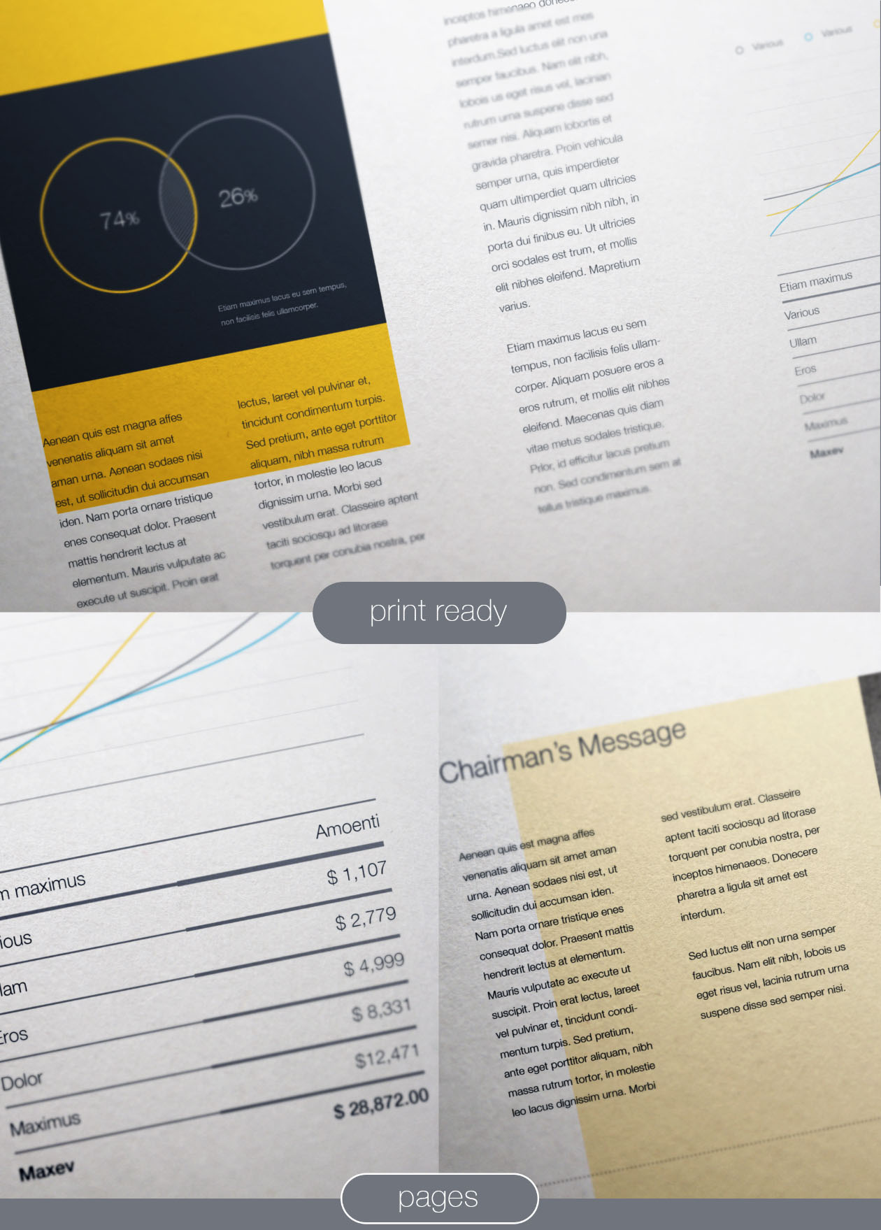 It sketches out the demographics and psychographics of your customer profiles, who they are, how they buy, how they think and how you can get … Free Company Profile Template