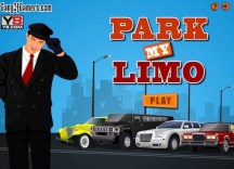 Park My Limo