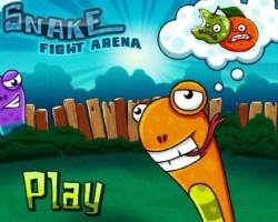 snkae fight area