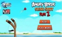 Angry Birds Slingshot Fun