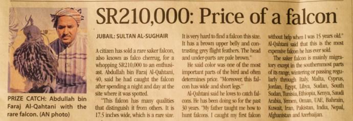 Falcon price