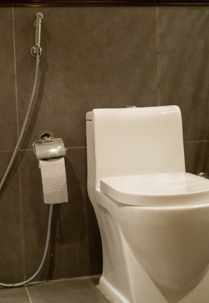 Saudi toilet. Actually they are common in the gulf region. Very civilized. It is a hand-held bidet.