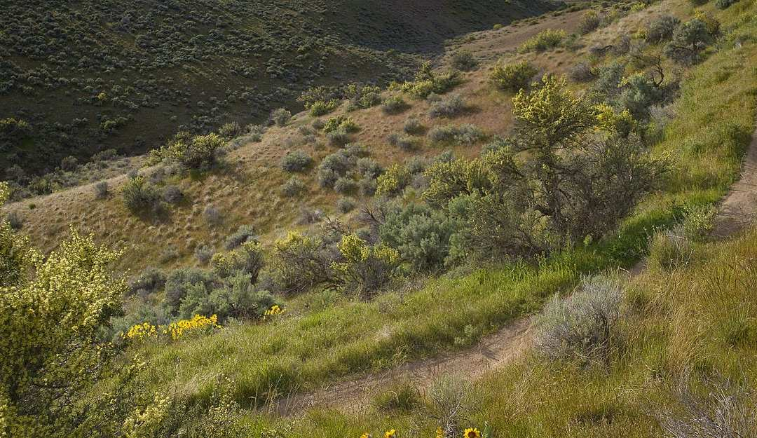 Northwest Spring Cycling: Respect the Trails