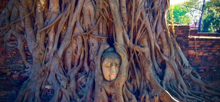 Ayutthaya Travel Guide | Ayutthaya Day Trip from Bangkok