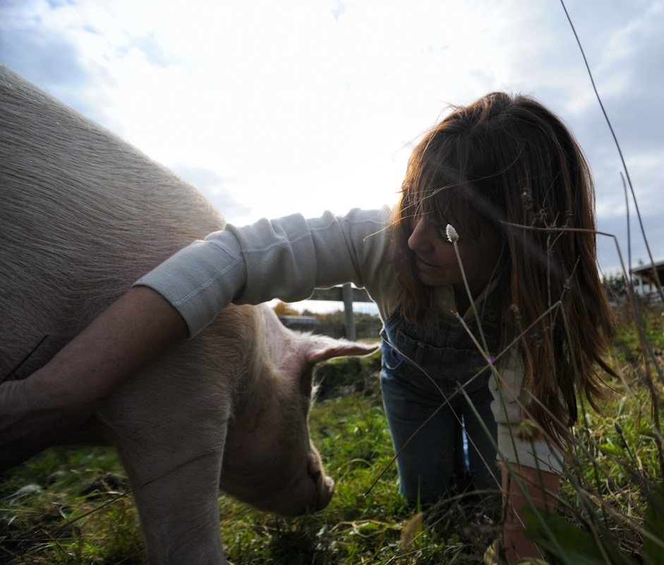 Susie Coston, National Shelter Director at Farm Sanctuary