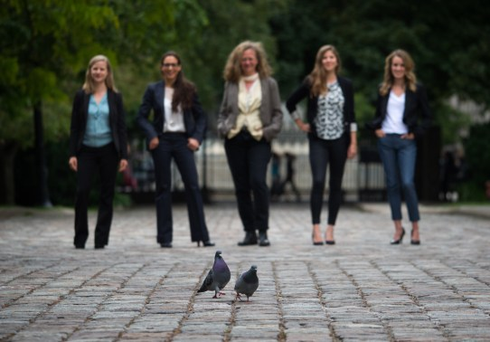 Pigeon photo bomb at Osgoode Hall, Toronto.