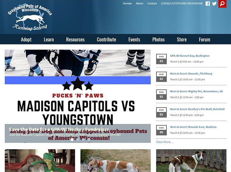 Screenshot of Greyhound Pets of America - Wisconsin website
