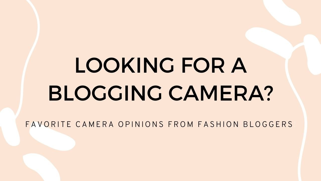 Looking for a blogging camera? Here are some opinions from bloggers!
