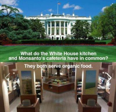 whitehouse-monsanto