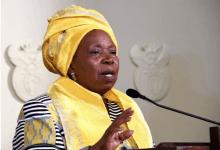Nkosazana Dlamini Zuma, racist & sexist slurs