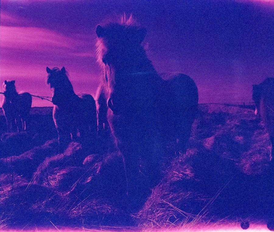 Jackson Kirchner Uncertain Magazine Film Photography