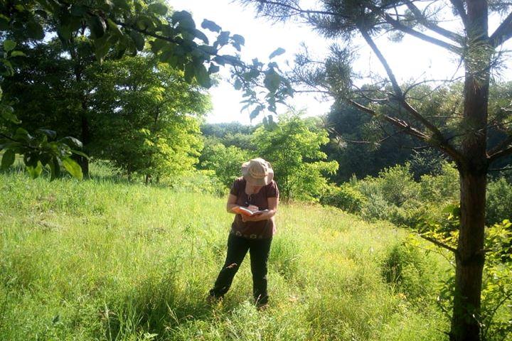 проект інвентаризації біорізноманіття Ржищівської ОТГ
