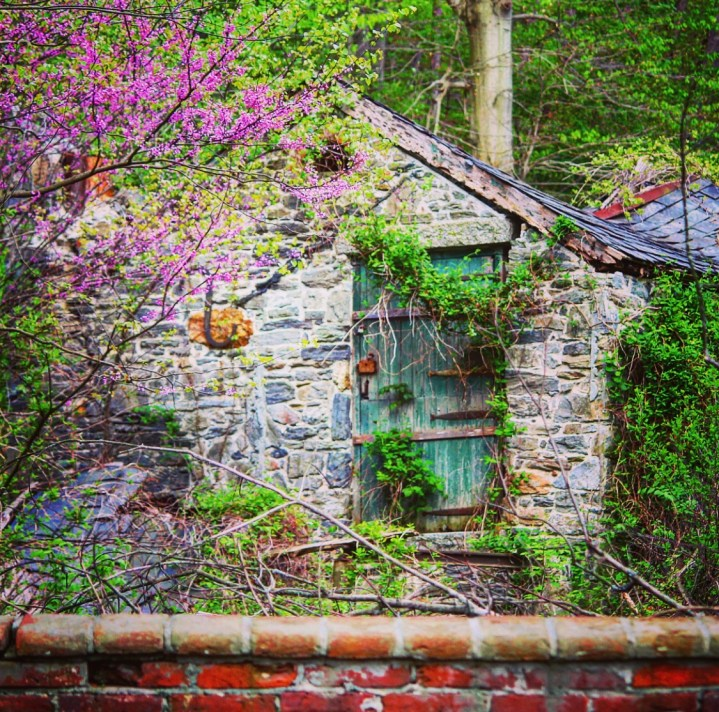 Former guest cottage at 10 Hilldale Road as it appears in the spring.