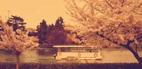 pasquetta_boat