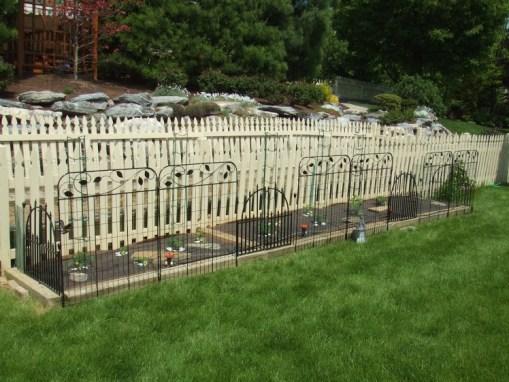 UNCLE HANDY – Back Yard Garden