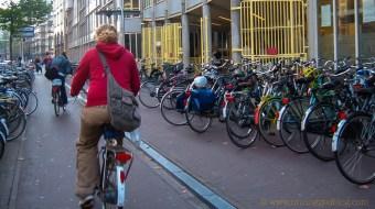 bikerider-1