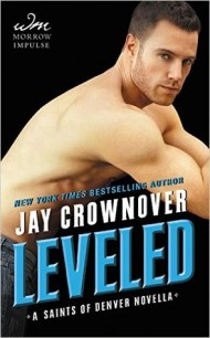 Leveled cover - (un)Conventional Bookviews