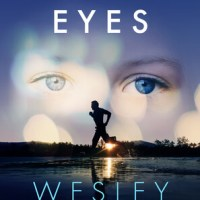 Blogtour Review: In Her Eyes – Wesley Banks