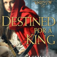 Review: Destined for a King – Ashlyn Macnamara