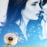 Review: Something Nice – Tiffany Reisz