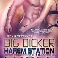 Blogger Wife Chat Review ~ Big Dicker ~ KC Cross