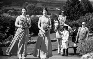 Nick Brightman Photography 7 -  Deer Park Hall outdoor wedding