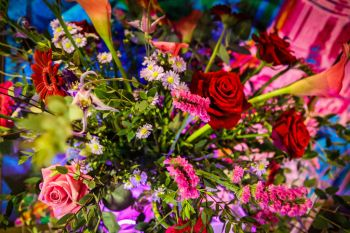 neon dreams- free form images- valentines- flowers