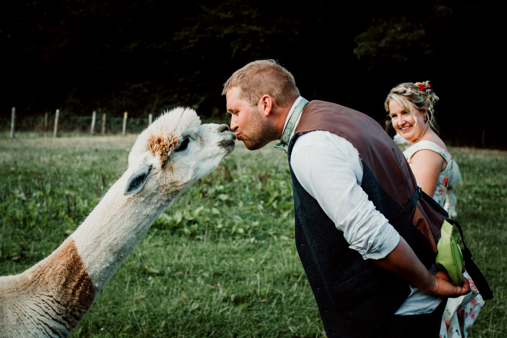 Alpaca Yurt Wedding- Kiss