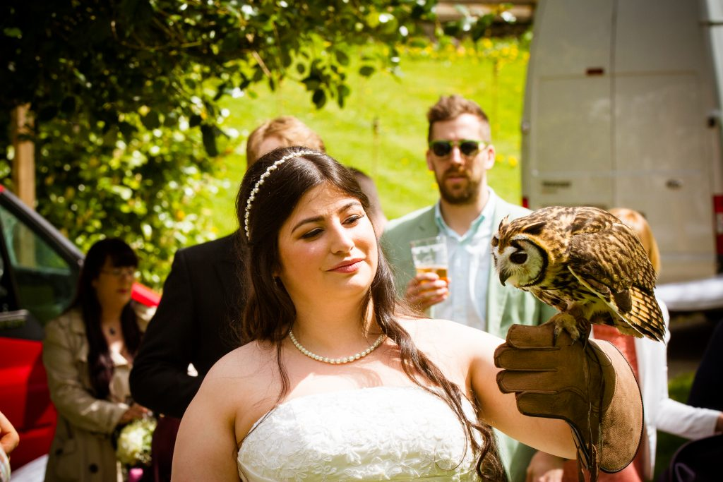 Bride holding Owl- Falconry display at wedding day - Harry Potter Wedding - Lumiere Photography