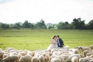 Penelope Jayne Celebrant - Harrogate Wedding Celebrant-5