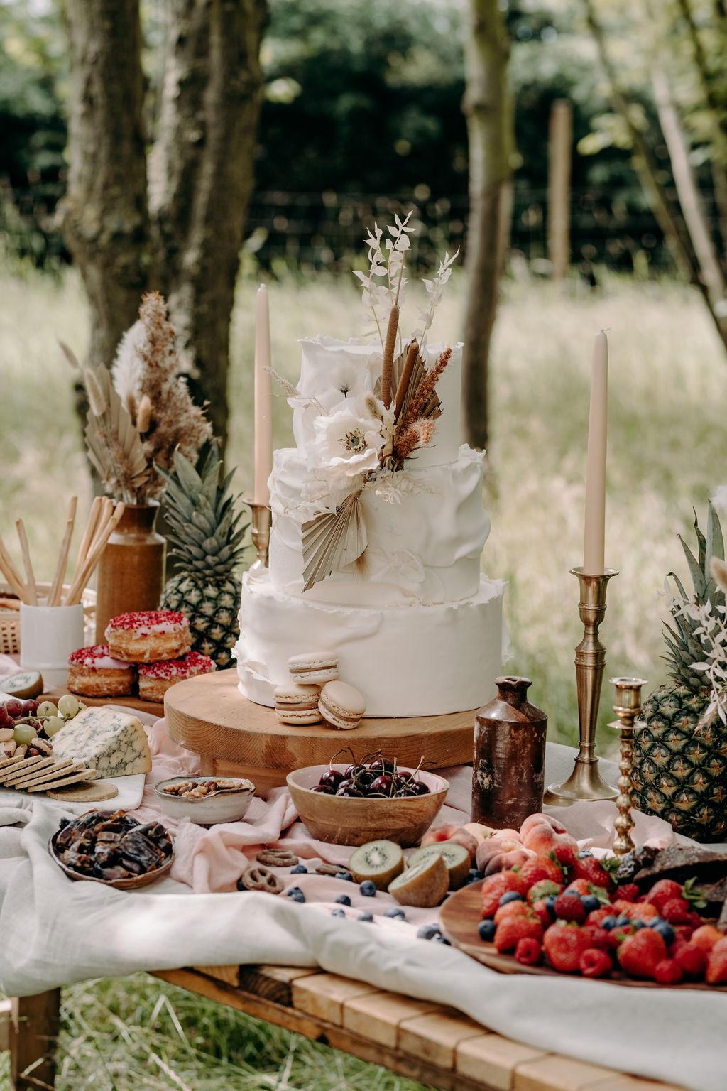 simple wedding cake - boho wedding cake - wedding grazing table - micro wedding - unconventional wedding