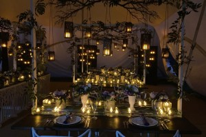 Medici Design Weddings And Events - Unconventional Wedding - 6