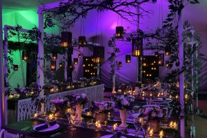 Medici Design Weddings And Events - Unconventional Wedding - 8