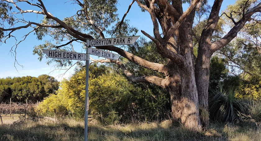 Mawson Trail - our start point at High Eden Road
