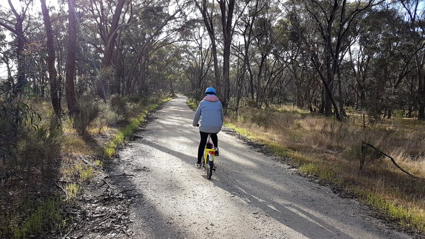 Castlemaine to Maldon Trail - Fe ahead of me on the trail