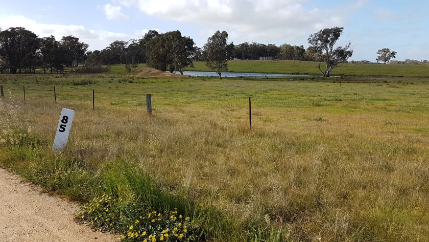 Castlemaine to Maldon Trail - the countryside opens up