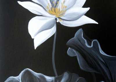 Gilded Waterlily (Lovely Lotus)